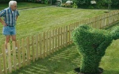 Dealing with Bad Neighbours