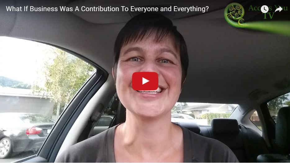 What If Business Was A Contribution To Everyone and Everything?