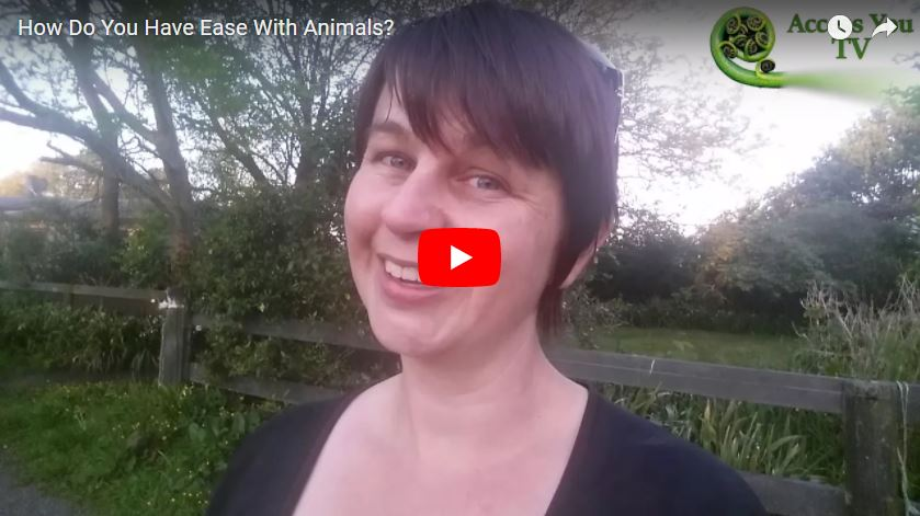 How Do You Have Ease With Animals?